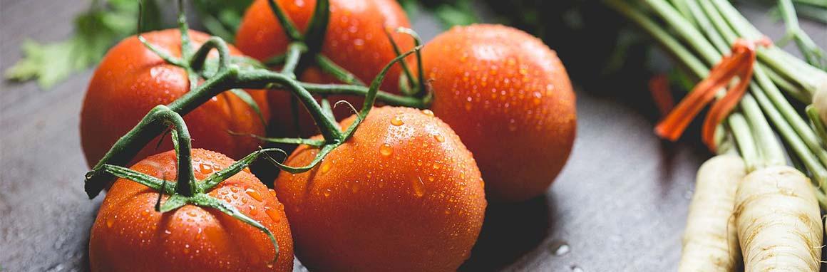 Tomaten Geschichte Ernährung und Gesundheit