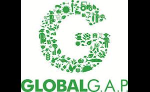 Global Gap